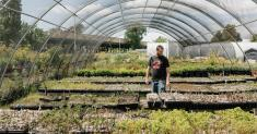 Kale, Not Jail: Urban Farming Nonprofit Helps Ex-Cons Re-enter Society