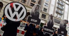 Volkswagen Vows to End Experiments on Animals