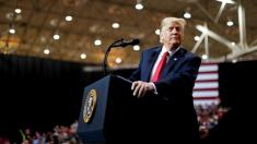 Trump makes final push in battleground states as midterm election nears