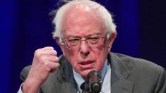 Bernie Sanders brings in massive fundraising total in 1st day of campaign
