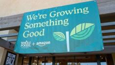 Amazon to open non-Whole Foods grocery chain