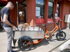Rad vs. Bam: Seattle e-bike startup calls rival a 'copycat company,' sues over alleged 'knockoff website'