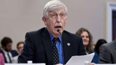 NIH director: 70K coronavirus cases could be confirmed in US by end of next week
