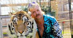 Who should play Joe Exotic in a 'Tiger King' movie? Hollywood's in a big cat fight