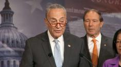 Schumer says deal reached on small business funding includes national testing plan