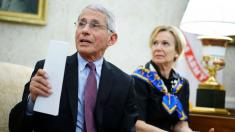 Fauci tells ABC's 'Powerhouse Politics' that attending rallies, protests is 'risky'
