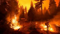 Creek Fire becomes largest single blaze in California history