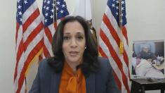 Kamala Harris suspends travel after team members test positive for COVID-19
