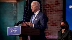 Biden plans 'dozens' of executive actions in first days