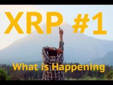 Bakkt CEO Crypto Revolution is Beginning XRP Bitcoin Crypto Kungfu