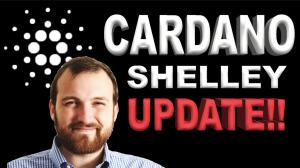 Cardano Staking Update Shelley