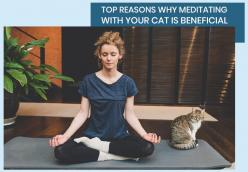 Top Reasons Why Meditating With Your Cat is Beneficial