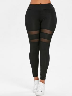 Mesh Panel Sport Leggings