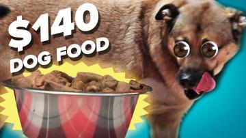 10 Dog Food Vs. 140 Dog Food