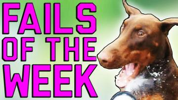 Fails of the Week 1 October 2016 || Fail Army