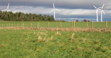 Scotland produced enough wind energy for double its homes in last 6 months