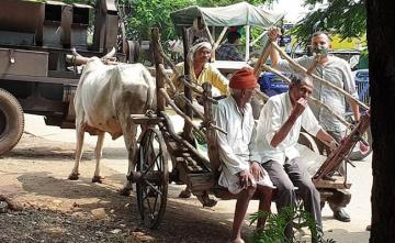 "Madhya Pradesh Farmers Cautious, Want More Info On ""Historic"" Farm Bills"