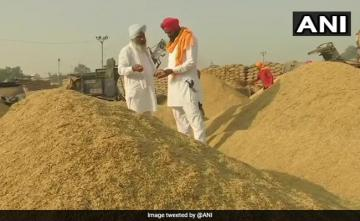 With Over 2,000 New Markets, Paddy Procurement Begins In Punjab