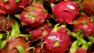 "Why Gujarat Is Renaming Dragon Fruit As ""Kamalam"""