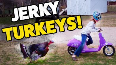 JERKY TURKEYS | Funny Thanksgiving Turkey Fails | November 2018