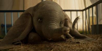 Looks Like Dumbo May Struggle To Make A Profit For Disney