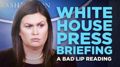WHITE HOUSE PRESS BRIEFING A Bad Lip Reading