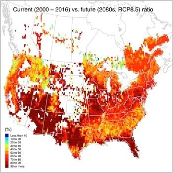 New research calculates capacity of North American forests to sequester carbon