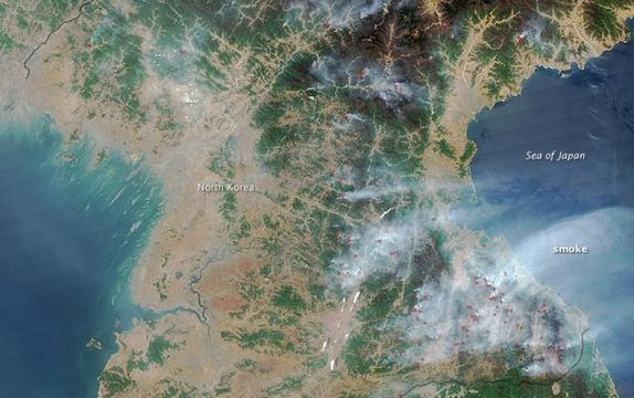 With Widespread Deforestation, North Korea Faces an Environmental Crisis