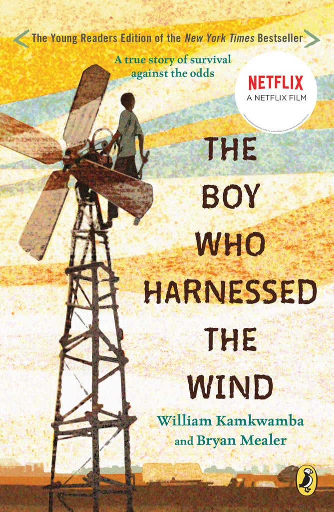 Boy-Who-Harnessed-Wind-William-Kamkwamba-Bryan-Mealer.jpg