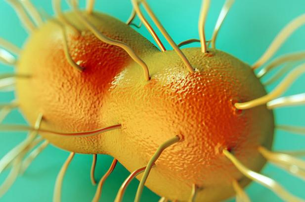 "The Man With ""Super Gonorrhea"" Was Cured, But Not Everyone In The US Is Getting The Right Antibiotics"